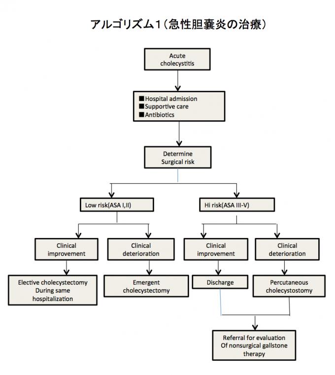 アルゴリズム1(急性胆嚢炎の治療)